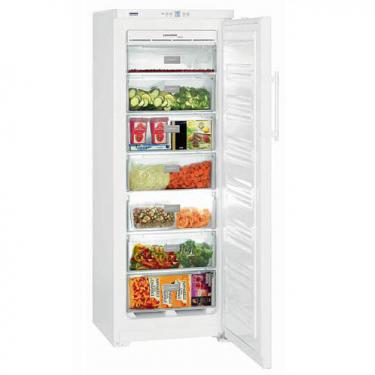 Congelatore verticale GNP2713