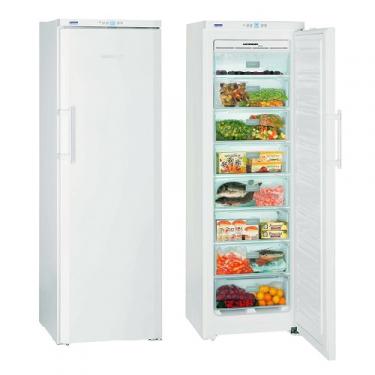 Congelatore verticale GNP3013