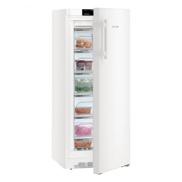 Congelatore verticale GNP3255