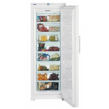Congelatore verticale GN3113