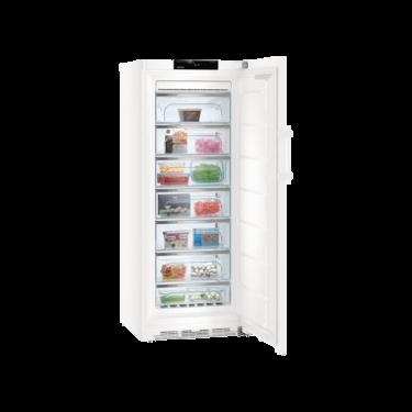 Congelatore verticale GNP4655