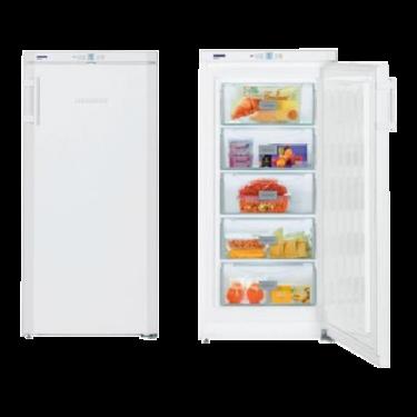Congelatore verticale GP 2033